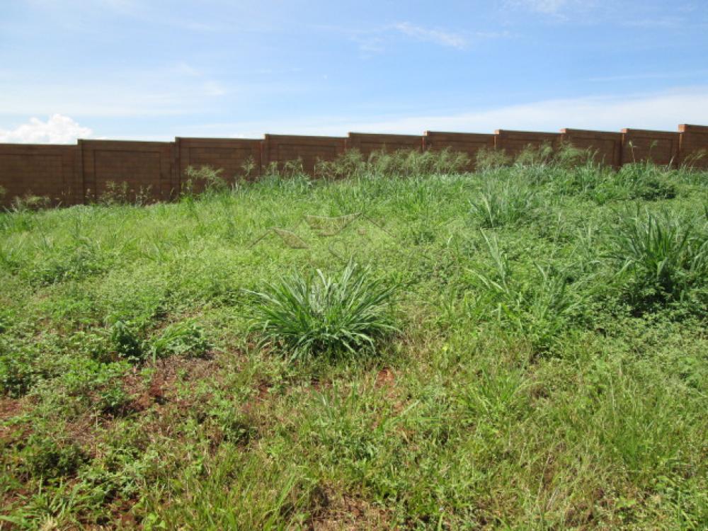 Comprar Terrenos / Lote / Terreno em Ribeirão Preto apenas R$ 150.000,00 - Foto 3