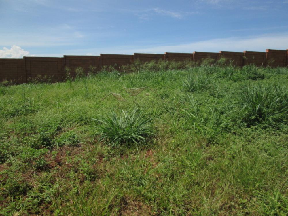 Comprar Terrenos / Lote / Terreno em Ribeirão Preto apenas R$ 150.000,00 - Foto 4