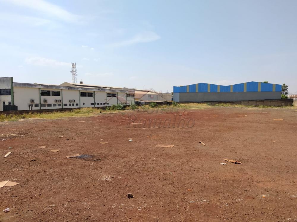 Alugar Terrenos / Lote / Terreno em Ribeirão Preto apenas R$ 9.000,00 - Foto 3