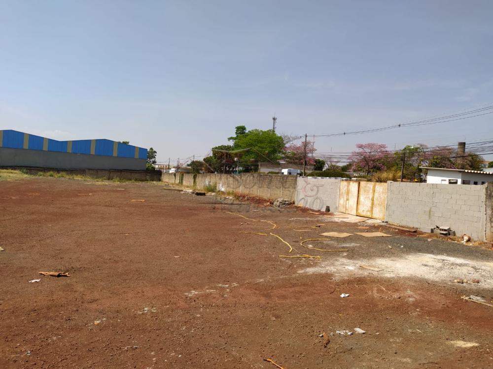 Alugar Terrenos / Lote / Terreno em Ribeirão Preto apenas R$ 9.000,00 - Foto 4