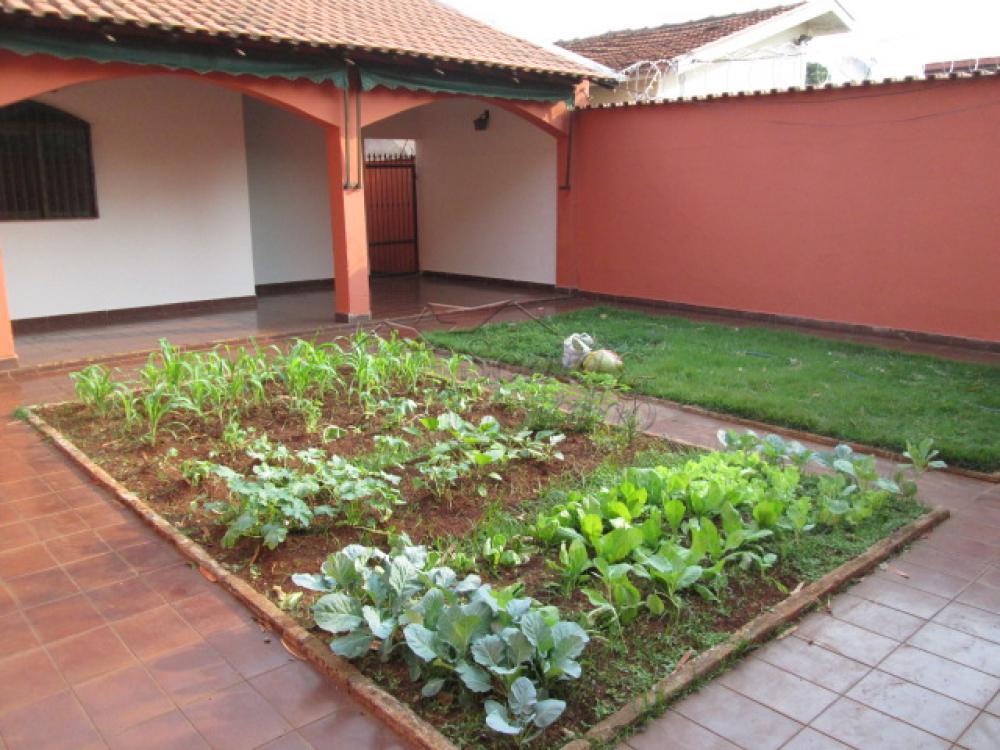 Alugar Casas / Padrão em Ribeirão Preto apenas R$ 1.350,00 - Foto 6