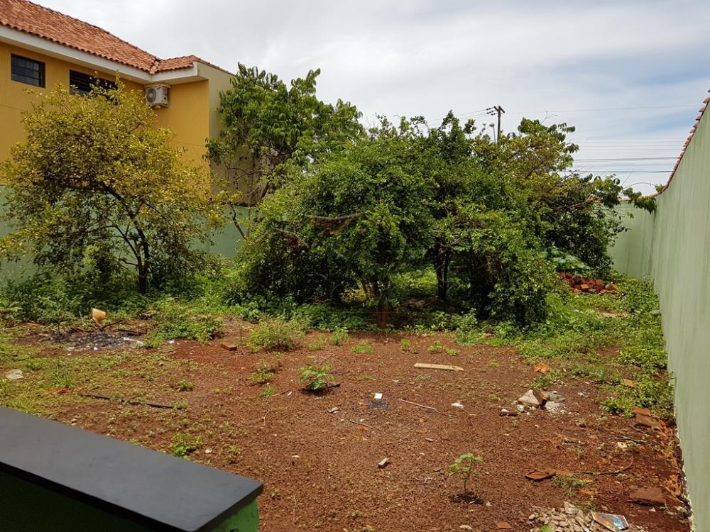 Alugar Casas / Padrão em Ribeirão Preto apenas R$ 1.100,00 - Foto 3