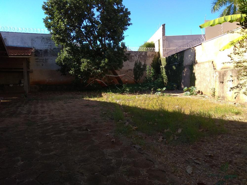 Alugar Casas / Padrão em Ribeirão Preto apenas R$ 3.500,00 - Foto 6
