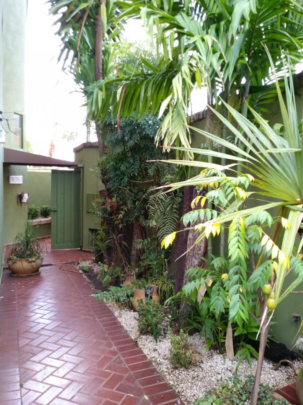 Alugar Casas / Padrão em Ribeirão Preto apenas R$ 3.600,00 - Foto 6