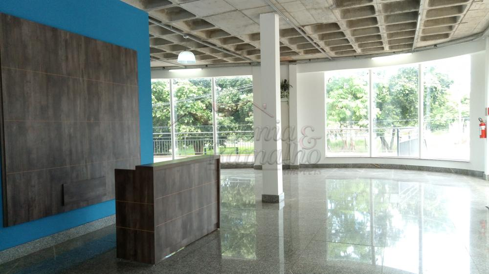 Alugar Comercial / Predio Comercial em Ribeirão Preto apenas R$ 45.000,00 - Foto 3