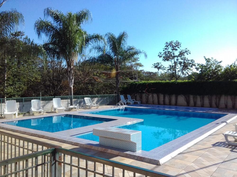 Alugar Apartamentos / Padrão em Ribeirão Preto apenas R$ 400,00 - Foto 1