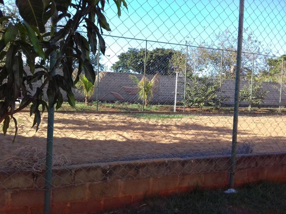 Alugar Apartamentos / Padrão em Ribeirão Preto apenas R$ 400,00 - Foto 18