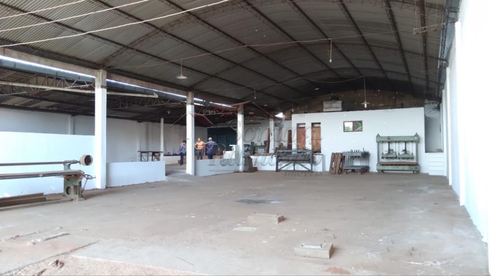 Alugar Comercial / Galpao / Barracao em Cajuru R$ 3.900,00 - Foto 1