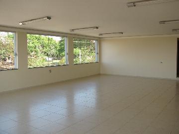 Alugar Comercial / Salão comercial em Ribeirão Preto. apenas R$ 3.700,00