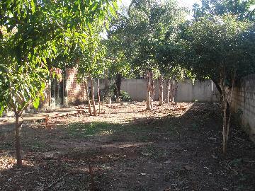 Alugar Casas / Chácara em Ribeirão Preto. apenas R$ 400.000,00