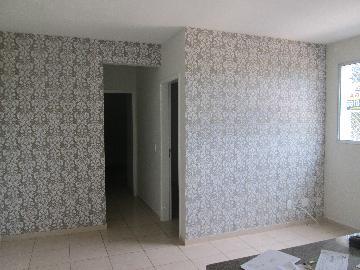 Alugar Apartamentos / Padrão em Ribeirão Preto. apenas R$ 790,00