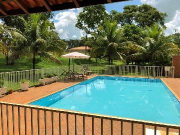 Alugar Casas / Chácara em Ribeirão Preto. apenas R$ 1.200.000,00