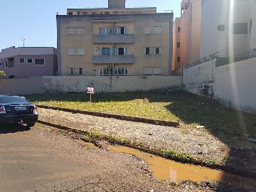 Alugar Terrenos / Lote / Terreno em Ribeirão Preto. apenas R$ 153.000,00