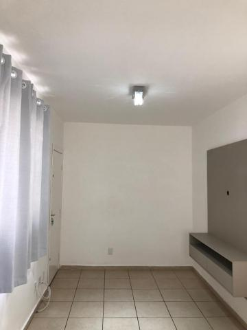 Sertaozinho Jardim Veneto Apartamento Locacao R$ 150.000,00 Condominio R$232,88 2 Dormitorios 1 Vaga