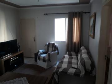 Apartamentos / Padrão em Ribeirão Preto