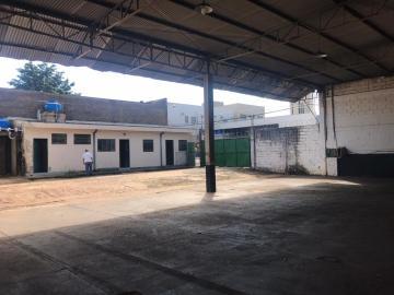 Comercial / Salão comercial em Ribeirão Preto Alugar por R$3.200,00