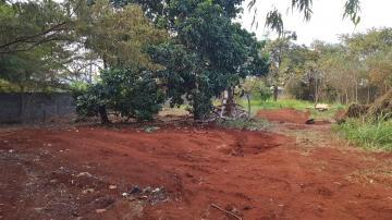Terrenos / Lote / Terreno em Ribeirão Preto Alugar por R$6.000,00