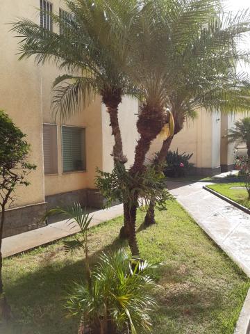 Comprar Apartamentos / Padrão em Ribeirão Preto R$ 210.000,00 - Foto 3