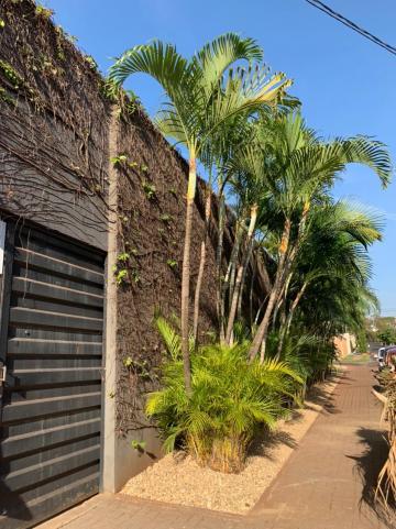 Alugar Comercial / Imóvel Comercial em Ribeirão Preto R$ 8.800,00 - Foto 2